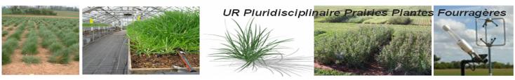 Bienvenue sur le site de l'URP3F